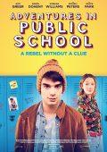 Public Schooled (2017)