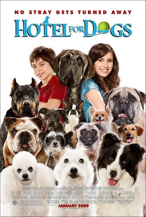Um Hotel Bom pra Cachorro (2009)