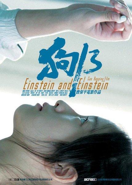 Einstein and Einstein (2013)