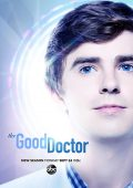 The Good Doctor (2017– )