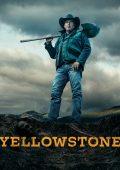 Yellowstone (2018– )